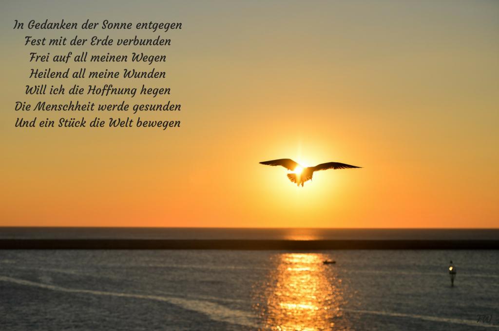 In Gedanken der Sonne entgegen Fest mit der Erde verbunden Frei auf all meinen Wegen Heilend all meine Wunden Will ich die Hoffnung hegen Die Menschheit werde gesunden Und ein Stück die Welt bewegen